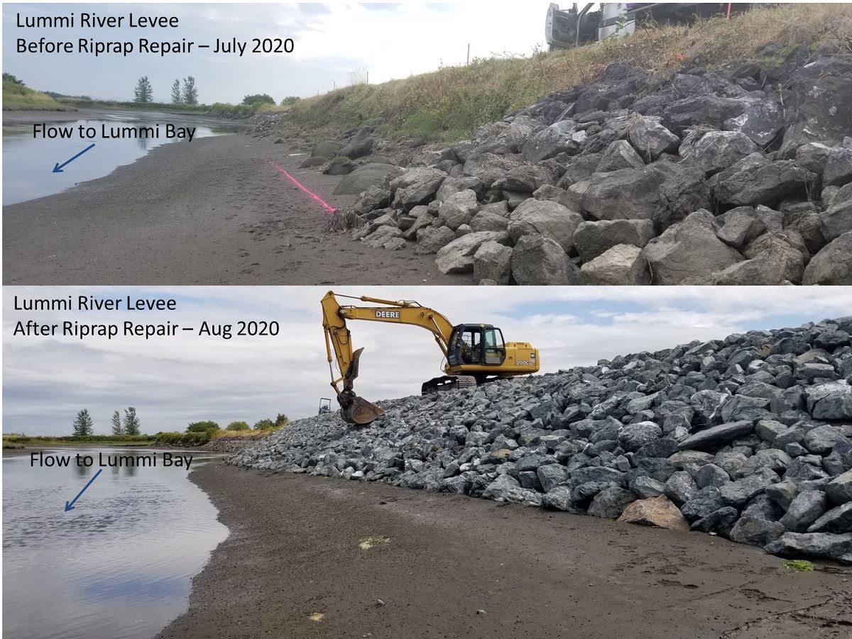 Lummi River Levee Repair Before and After